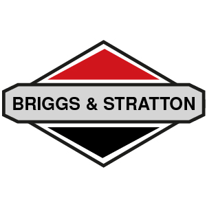 Briggs & Stratton Piston Rings - 4/Stroke