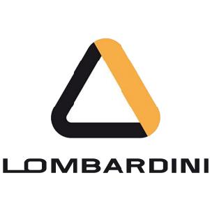 Lombardini Air Filters