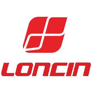 Loncin Ignition Coils